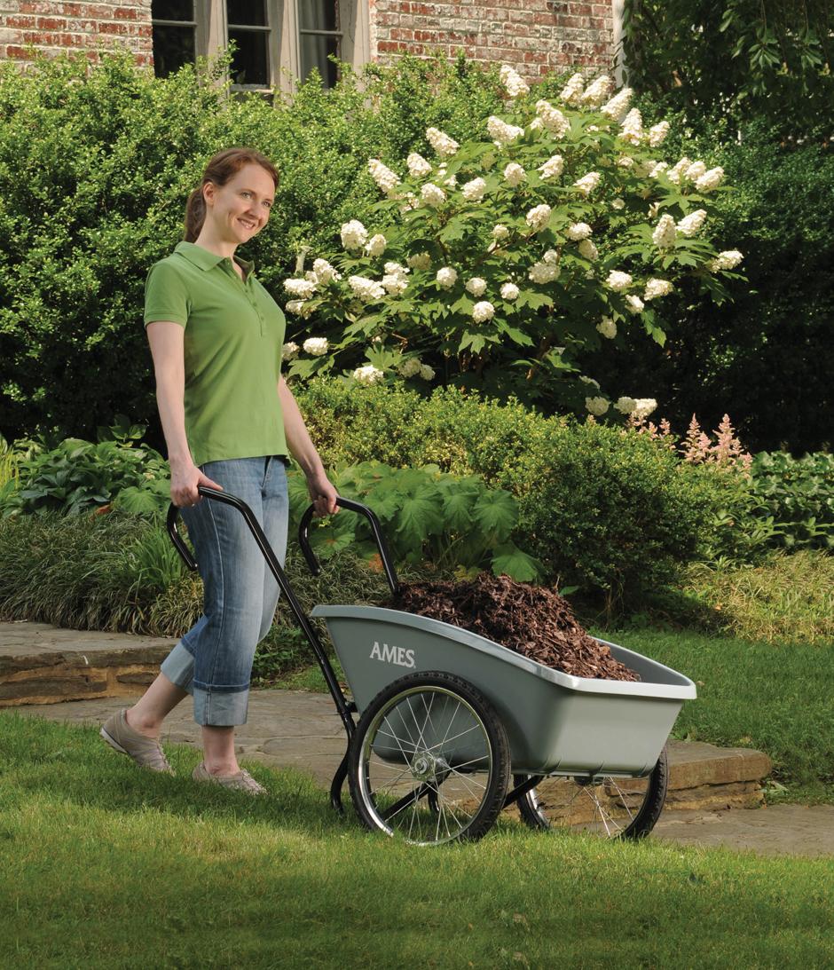 Total Control 5 cuft Garden Cart Ames
