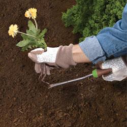 task-weeding