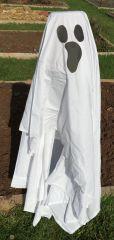 AMES Garden Ghost